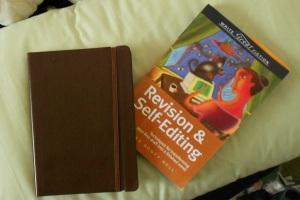 Revising and Self-Editing Novels