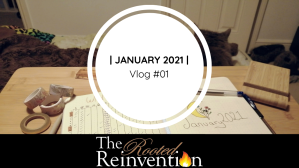vlog thumbnail cat bullet journal january spread